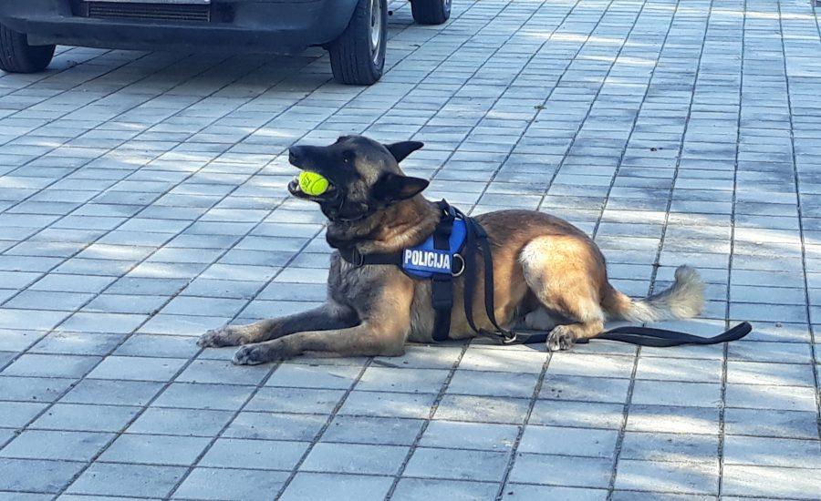 Vrtić posjetili policijski službenici i pas Zen