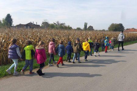 Svjetski dan pješačenja